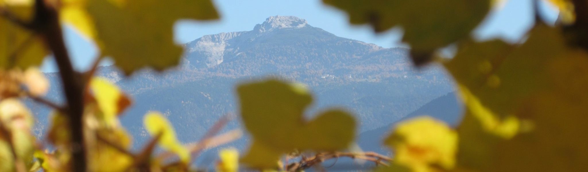 Weißhorn im Herbst